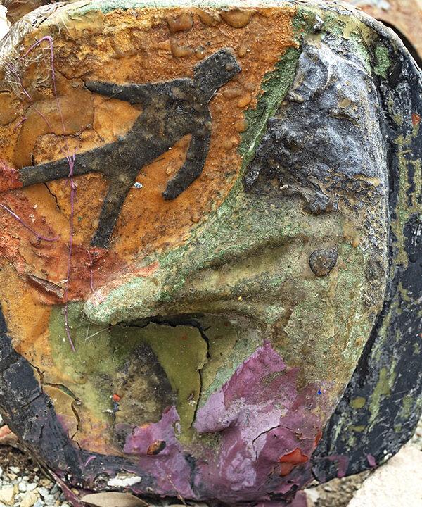 Tropical sculpture mixed media of Cassowary